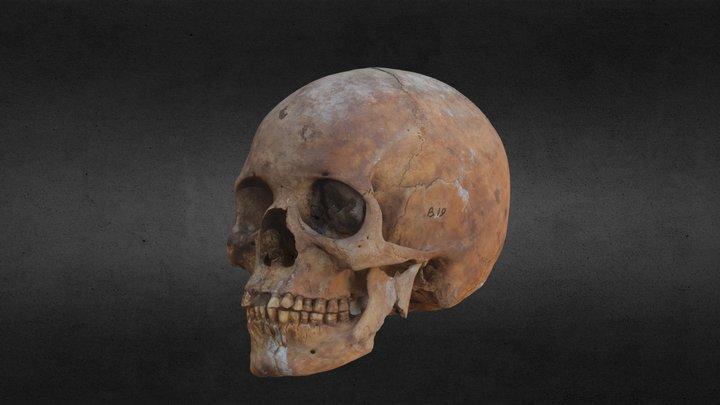 Burial 19 3D Model