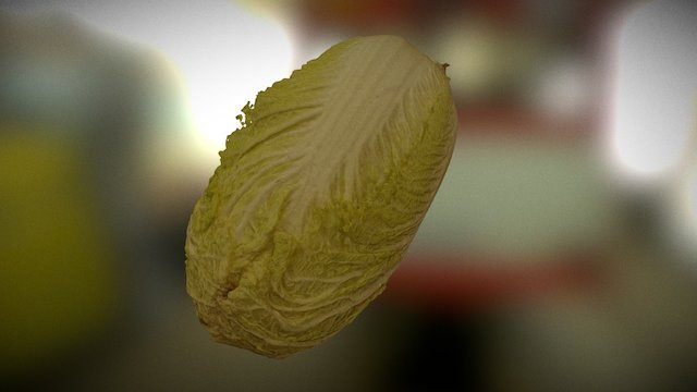 Napa cabbage 3D Model