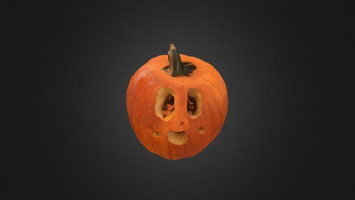 Pumpkin 10 3D Model