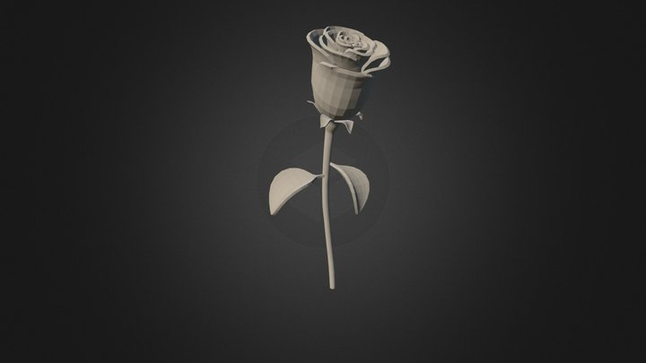 Rose Pp4 3D Model