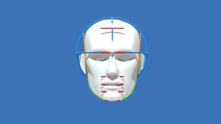 Human Head Proportion - Inspired by Loomis 3D Model