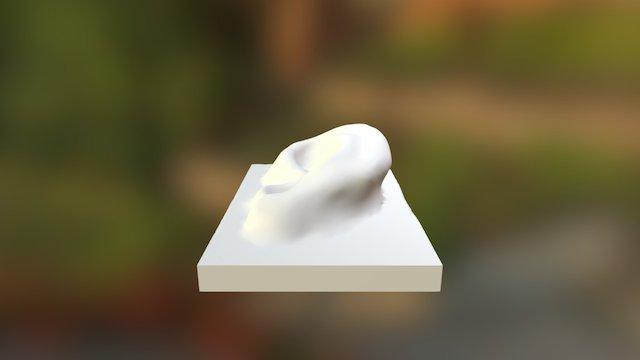 Ear (preview) 3D Model