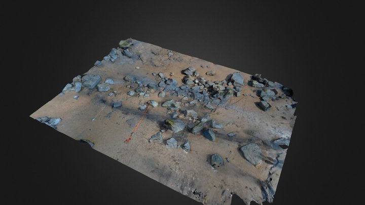 Intertidal quadrat (Walton-on-the-Naze, UK) 3D Model