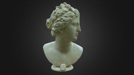 Venus Medici 3D Model