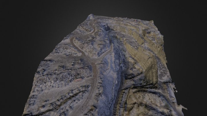 Mesh_Cambrian_10_8_colored_cropped 3D Model