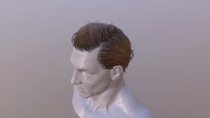 Male hair cards (brunette) 3D Model
