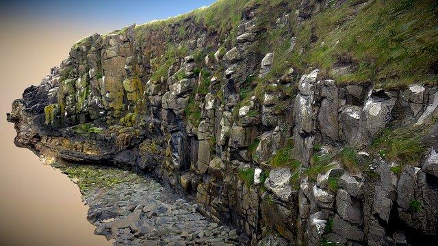 Dunstanburgh Cliffs 3D Model