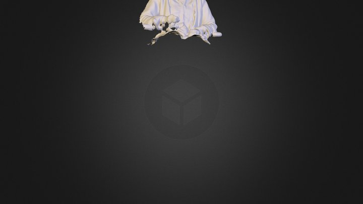 Scan of my Mother using xbox kinect 3D Model
