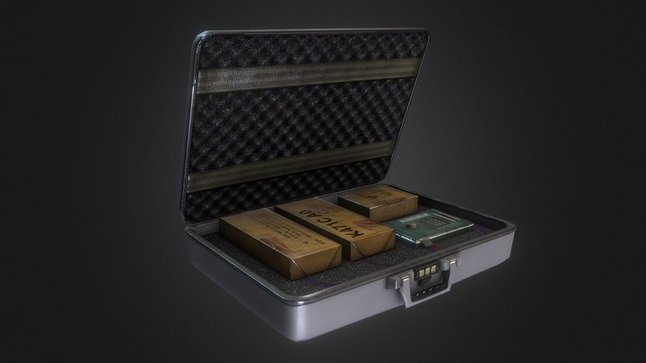 The Briefcase 3D Model