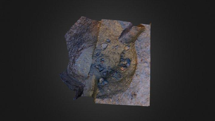 NWC_F586_PhotoScan.zip 3D Model