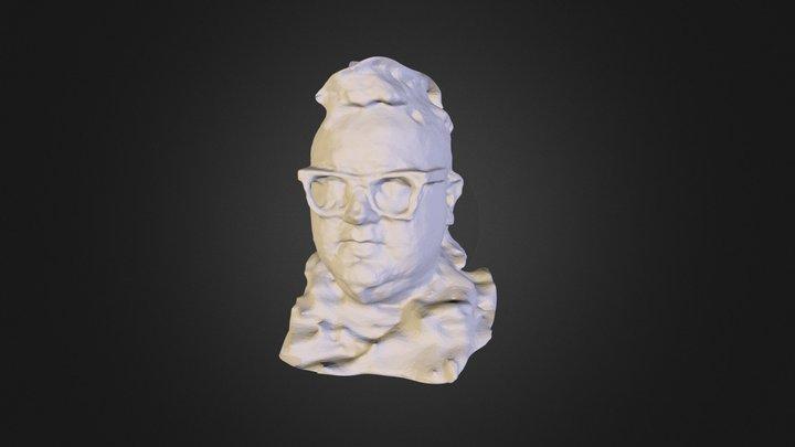 LEO GLASSES-mesh.zip 3D Model