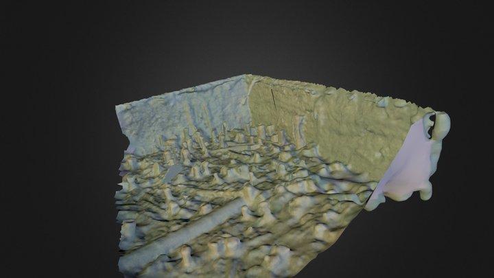 SipplingenMesh.ply 3D Model
