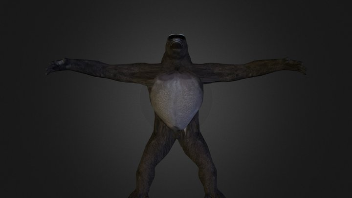 gorilla_centre.zip 3D Model