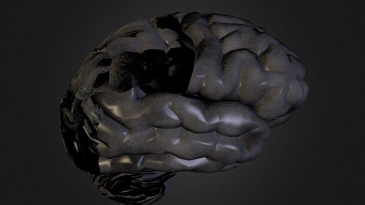 brain texture test.zip 3D Model
