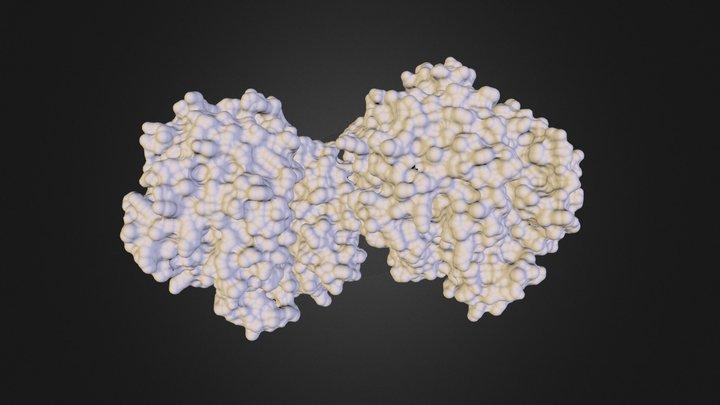 sicklecell.obj 3D Model