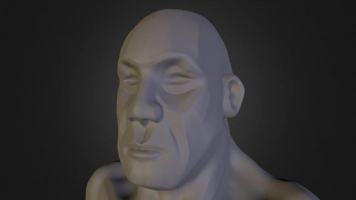 sketchy bust 3D Model
