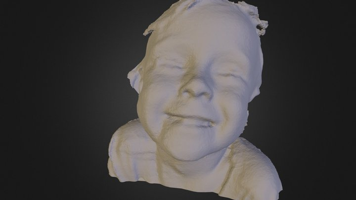 willow face to work with fixed3.stl 3D Model