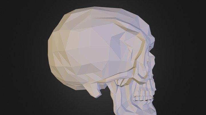 Skull N070211.3DS 3D Model