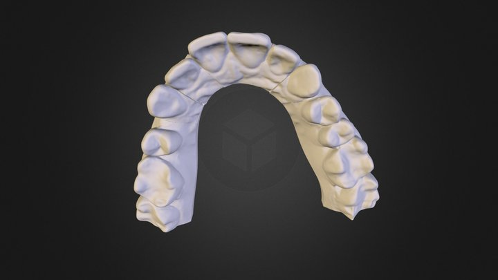 Resavska01.ply 3D Model