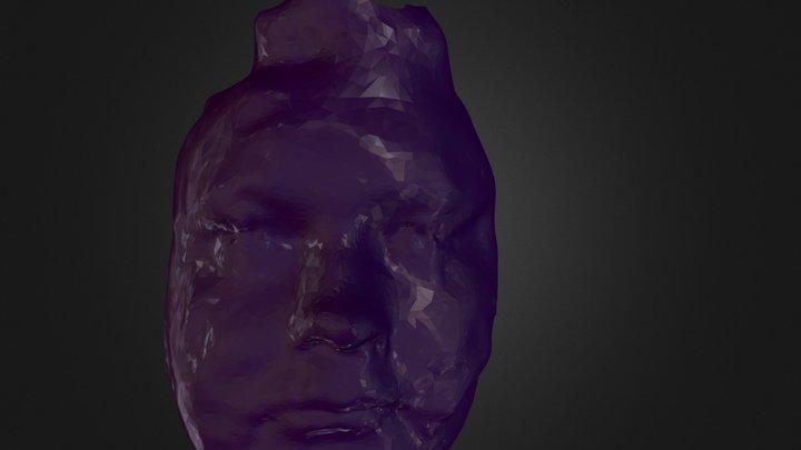 sculpt.stl 3D Model