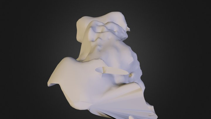 Project 5: Capturing Real World Objects 3D Model