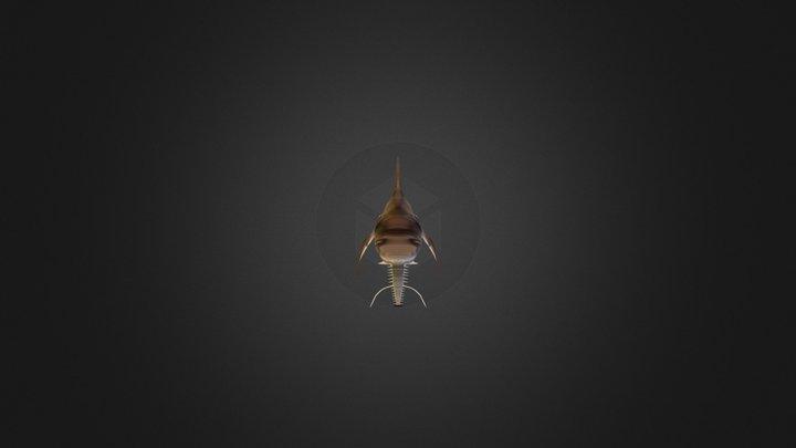 Saw shark 3D Model