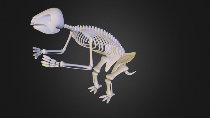 sloth.3ds 3D Model
