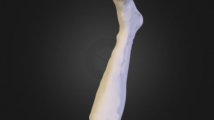 heather grey 618 2.stl 3D Model