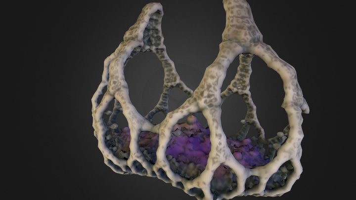 JewelBasket 3D Model
