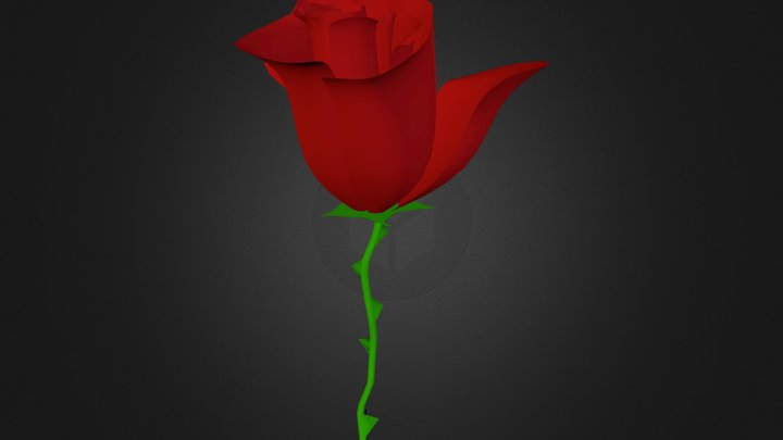 red_rose 3D Model
