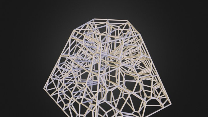Wireframe 3D Model