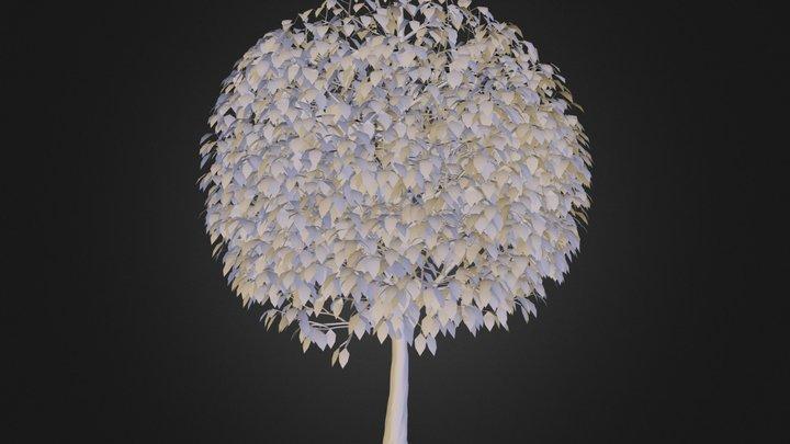 Tree_001.obj 3D Model