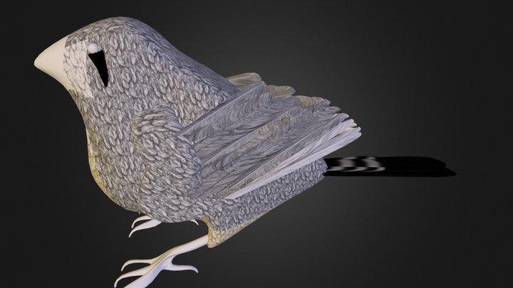 Zebra Finch 3D Model