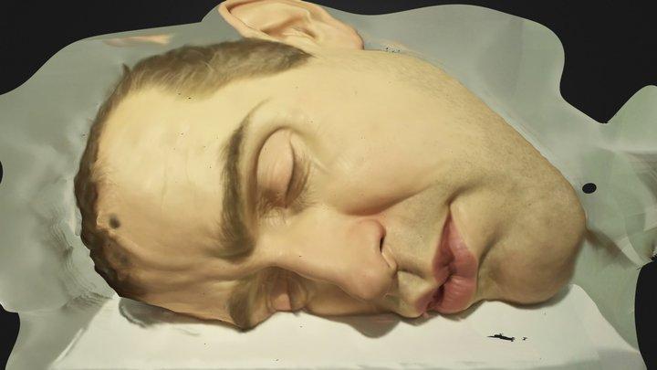 Ron Mueck's face 3D Model